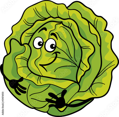 cute cabbage vegetable cartoon illustration