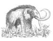 Mammouth - Prehistory