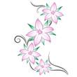 tatuaggio fiori di ciliegio
