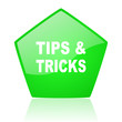 tips green pentagon web glossy icon