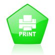 print green pentagon web glossy icon