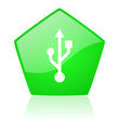 usb green pentagon web glossy icon