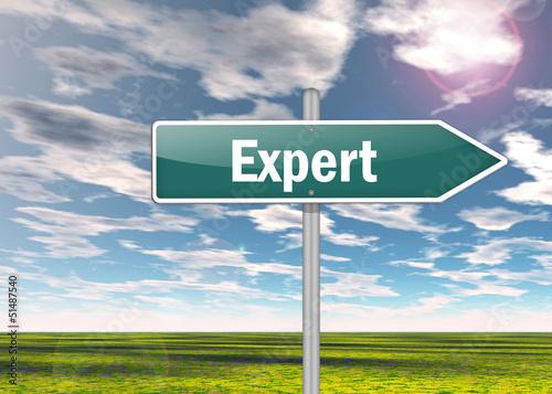"""Signpost """"Expert"""""""