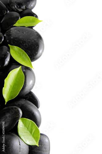 czarne-kamienie-i-zielone-liscie