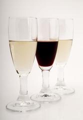 Degustazione di vino bianco e rosso