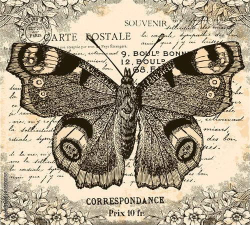 Vintage Butterfly © lynea