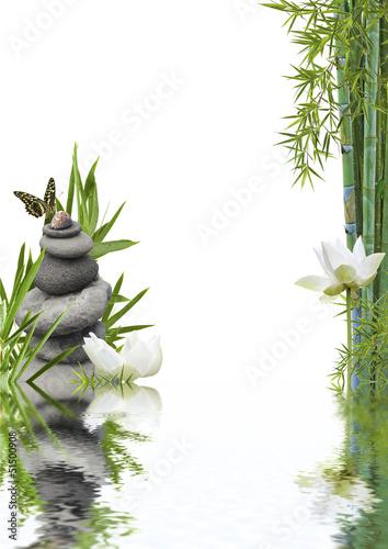 Fototapeten,lotus,natur,zen,entspannung