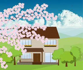 House with mountain backgroun vector