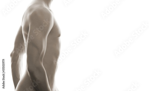 canvas print picture sensual mal body (white background)