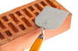 Plastering trowel and a brick