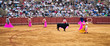 Corrida toreros at the Real Maestranza de Caballeria in Seville,