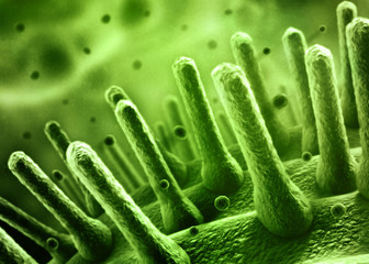Bacteria concept 3d illustration