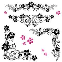 Hibiskus, hibiscus, Ranke, flora, Blumen, Blüten, Set