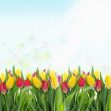 Tulips on sky background