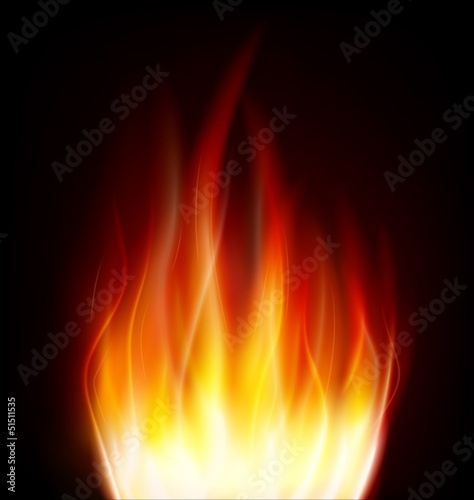 fire bonfire flame vector
