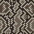 Snakeskin seamless pattern - vector illustration