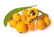 Loquat Fruits Pile Halves with Seeds