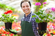 Man holding flowers working in a greenhouse in garden center