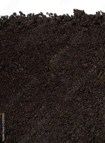 Leinwandbild Motiv soil for planting