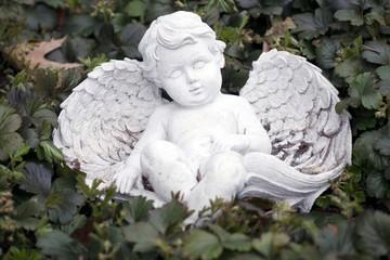 Engel liegt in Efeu und schläft