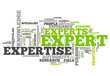"Word Cloud ""Expert"""