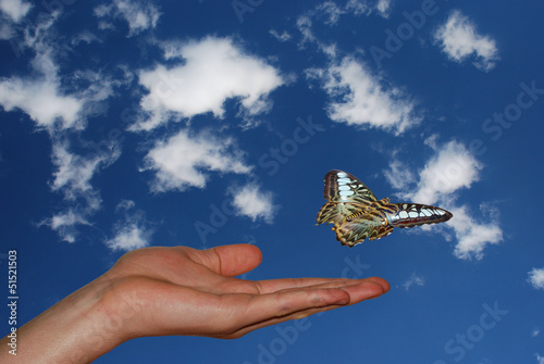 hand links mit himmel schmetterling