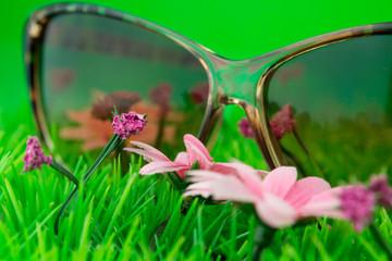 Glasses on green grass