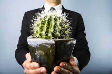 Businessman offering a cactus