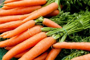 Frische Orangene Karotten gelbe rüben mit grün als Bund auf ei