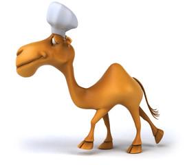 Camel chef