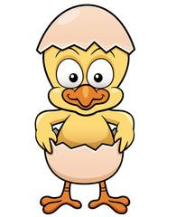 Vector illustration of Chick in Egg