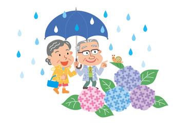シニア 夫婦 あじさい 梅雨