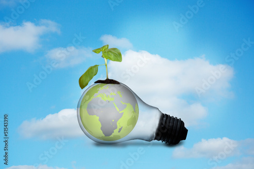 Light bulb with plant and earth