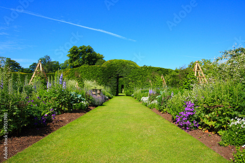 Beautiful summer garden