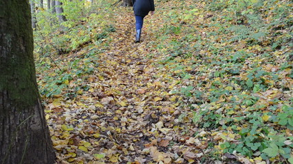 woman climb beauty color forest park hill covered golden leaves