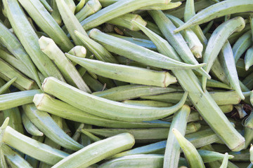 Okra Closeup Background
