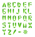 Alphabet letters made from green leafs