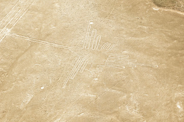 the hummingbird geoglyphs of Nazca