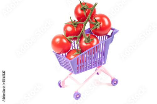 Conceptual photo with miniature shopping-cart