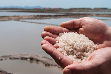 Handful of sea salt in the hands, background of salt fields