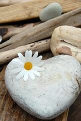 Blüte und Herz