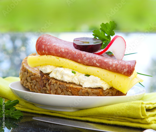 canvas print picture Sandwich mit Salami .