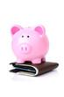 piggy bank wallet