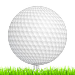Golf ball in a green grass