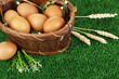 Eggs in basket on grass close-up