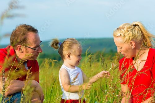 Kid in the meadow blowing dandelion seed