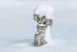 Engelsfigur im Schnee 1