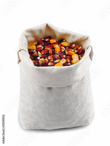 Corn grain in a burlap bag on a white background