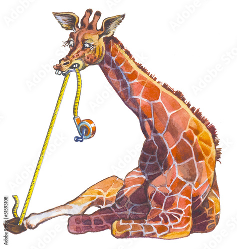 Giraffe - most high animal in the World