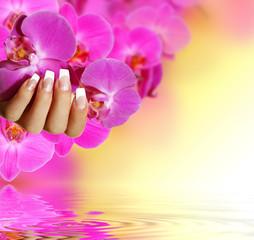 weisser French mit pinker Orchidee